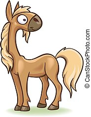cartoon funny foal - funny cartoon foal, vector, isolated on...