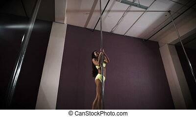 young professional pole dancer - Young professional pole...