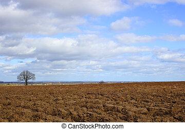plowed soil in rural england