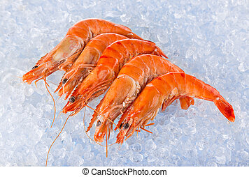 Fresh shrimps on crushed ice - Fresh shrimps on crushed ice,...