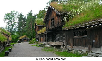 quot;people at norwagian village houses with green grass...