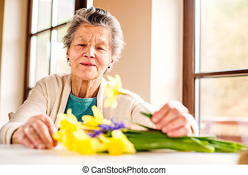 Senior woman by the window arranging bouquet of daffodils -...