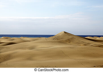 the sand dunes of maspalomas gran canaria
