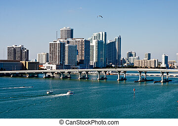 Gull Flying Over Biscayne Bay - A view of Biscayne Bay in...