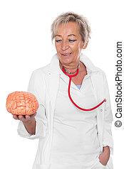 hembra, doctor, es, tenencia, un, cerebro,