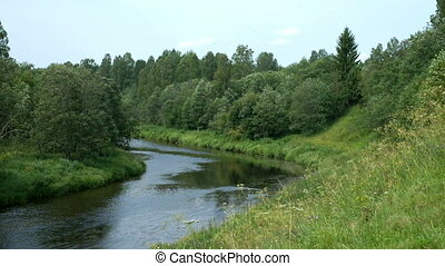 Summer landscape with river and forest.