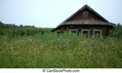 Swaying grass with country house - Swaying grass on...