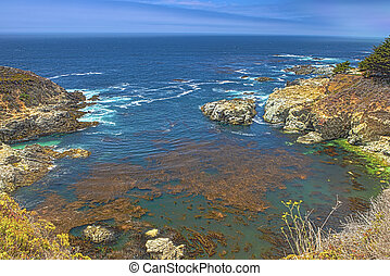 Mountains Slopes of Pacific Coastline in Summer Time Picture...