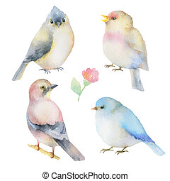 Watercolor set of birds. Hand painted illustration on white...