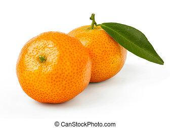 kumquat - Fresh Kumquat Isolated on White Background
