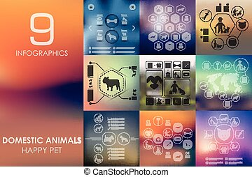 pets infographic with unfocused background - pets vector...