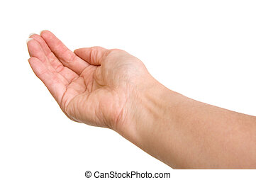 Cupped Hand - Cupped hand isolated on white background with...