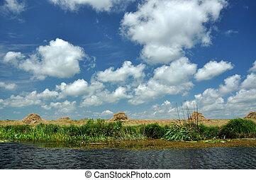 Landscape in the Danube delta, Romania