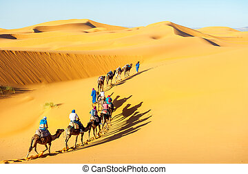 Caravan with bedouins and camels in sand dunes in desert at...