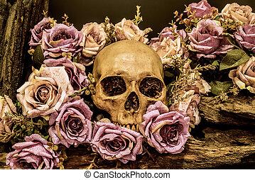 still life human skull with roses background - still life...