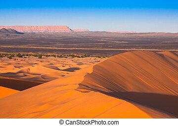 Desert dune at Erg Chebbi near Merzouga in Morocco. - Sand...