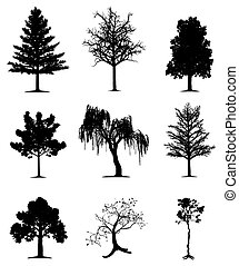 Trees collection - Collection of 9 trees on isolated white...
