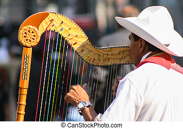 Traditional jarocho musician from Veracruz playing for...