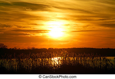 Golden Sunset on the Chesapeake Bay