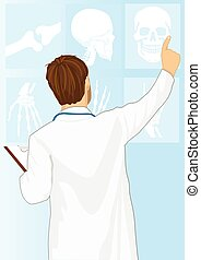 Medical doctor man pointing on tomography, rear view