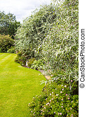 Beautiful garden with variety of trees and bushes