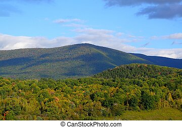 mountain in new england - mountain top covered with trees in...