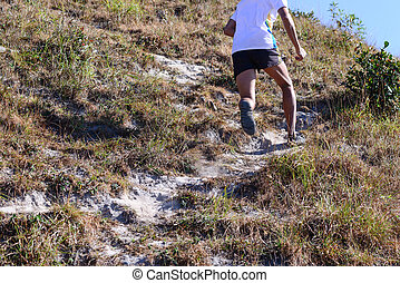 Cropped of runner's legs in nature trail running.