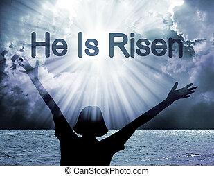 él, es, Levantado,