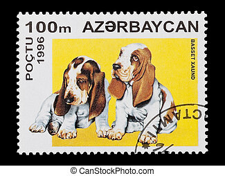 basset hounds - mail stamp printed in Azerbaijan featuring...