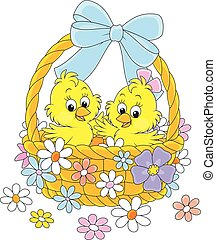 Easter basket with chicks - Little yellow chickens in an...