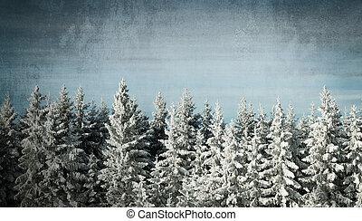 Grunge winter background with pine trees with snow on and a...