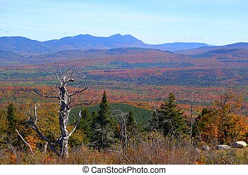 new england autumn colors - colorful new england foliage on...