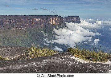View from the Roraima tepui on Kukenan tepui at the mist -...