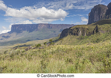 Tablemountain Roraima with clouds, Venezuela, Latin America....