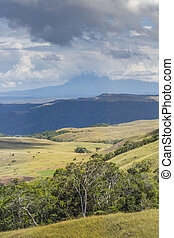 Beautiful landscape characteristic for the Gran Sabana -...