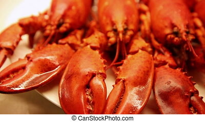 Four red lobsters ready to cook - Front view arrangement of...