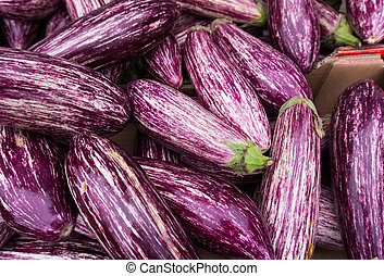 striped eggplants. Purple graffiti eggplant