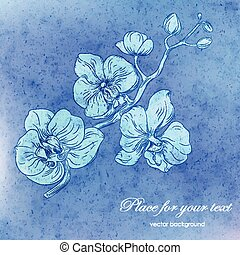 orchid branch design with copy-space - Vector card with blue...