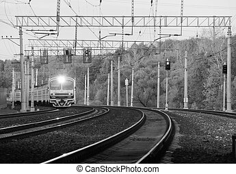 train on the tracks in the woods. black and white