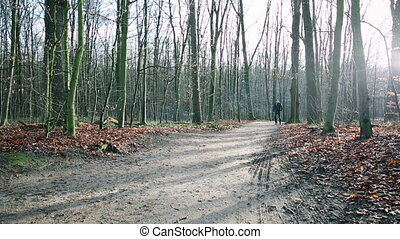 Man walking and jumping down path alone - Rear view of...