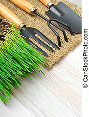 gardening tools, green grass on sac