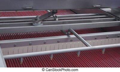 Stalks Removal Machinery - Mechanical Fruit Stalks Removing...