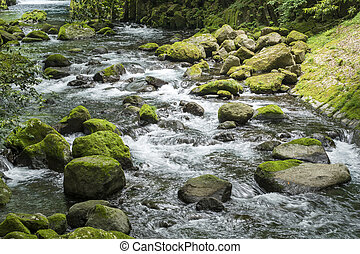 River flowing among stones - White flowing river among a lot...
