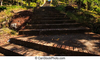 Camera Moves up Stone Steps among Trees to Pagoda - camera...