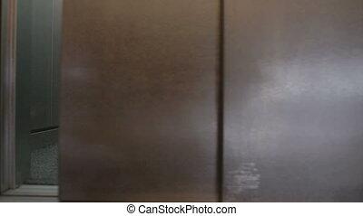 Chicken in elevator door opening and closing - Grey chicken...