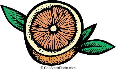 half of orange fruit isolated on the white background