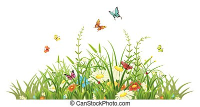 Spring green grass with flowers