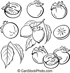 Persimmon Fruits and Leaves Pictograms - Set Persimmon...