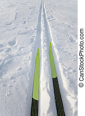 X-County skies in track - Cross country skiing Skies in...