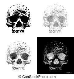 Skull 01 - Collection of stylized bony skeleton of the face,...
